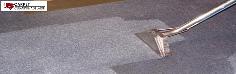 Carpet Sanitization Adelaide