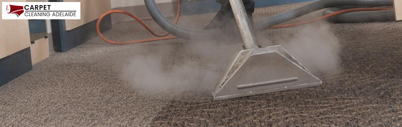 Carpet Steam Cleaning Fischer
