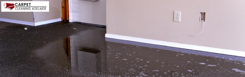 Flood Damage Restoration Fischer