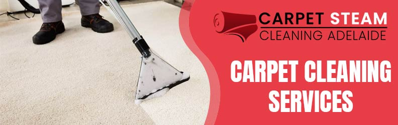How to Choose a Professional Carpet Cleaning Services