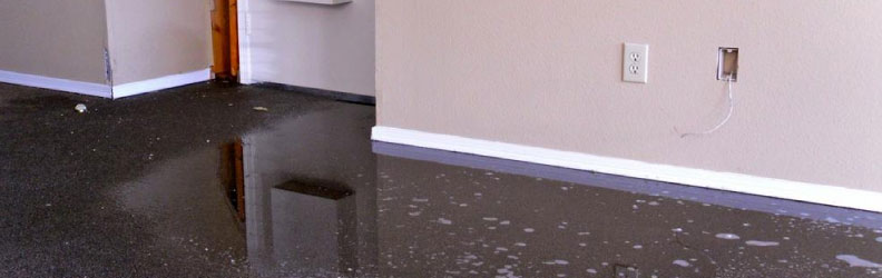 Best Carpet Water Damage Service