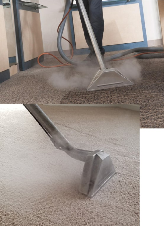 Expert Carpet Steam Cleaning Adelaide
